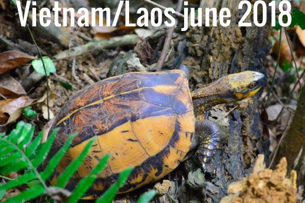 Viêt Nam/Laos juin 2018
