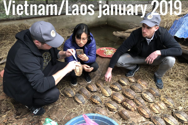 Vietnam/Laos january 2019
