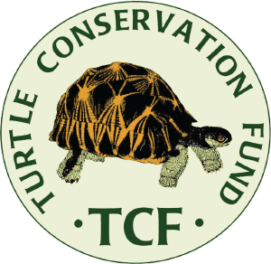 TCF Turtle Conservation Fund